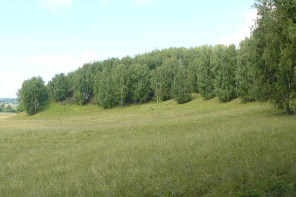 emeshevskij-3