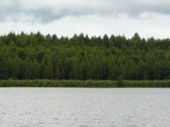 Озеро Малый Марьер (А.В. Исаев и Г.А. Богданов)
