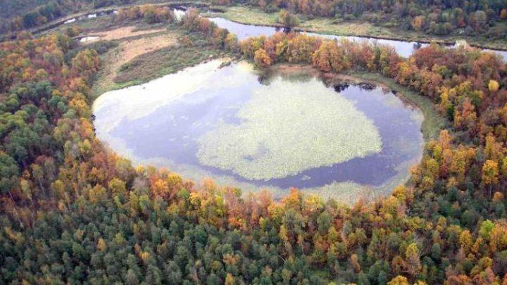 Капсино — озеро в Медведевском районе