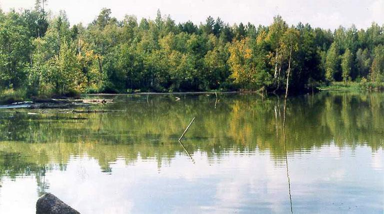 Озеро Соленое — комплексный памятник природы