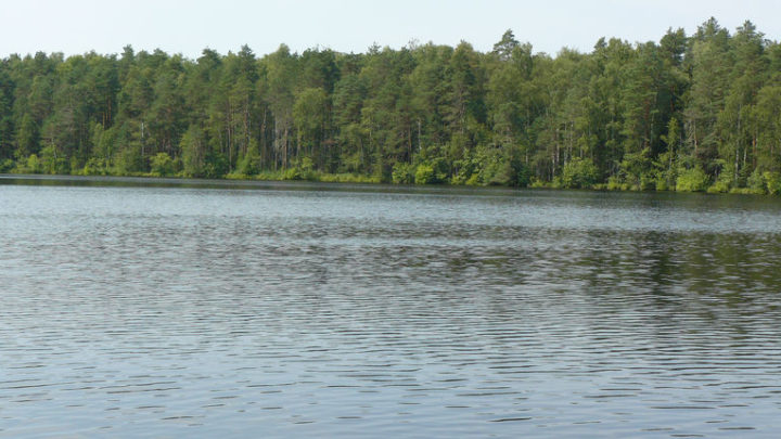 Озеро Гусинец — гидрологический памятник природы