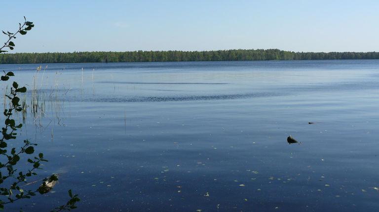 Озеро Лужьер — гидрологический памятник природы