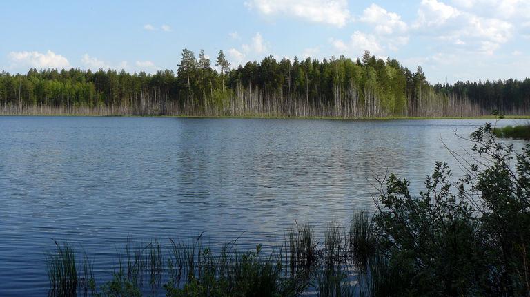 Озера Кумъяры — гидрологический памятник природы
