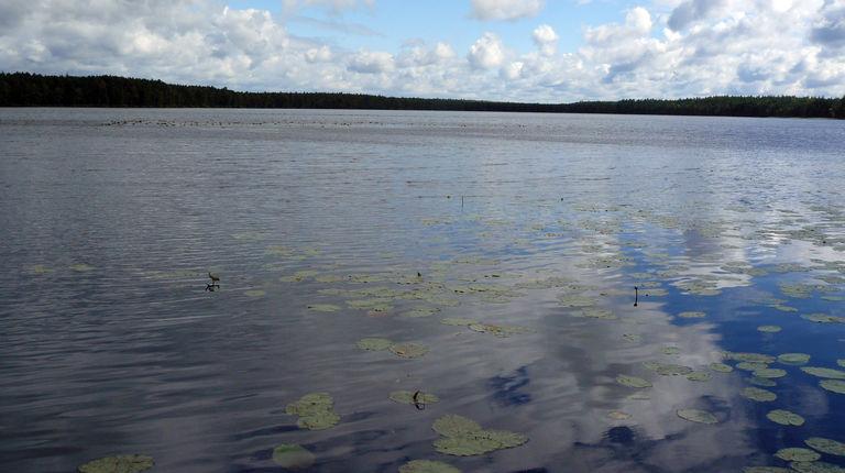 Озеро Большой Мартын — гидрологический памятник природы