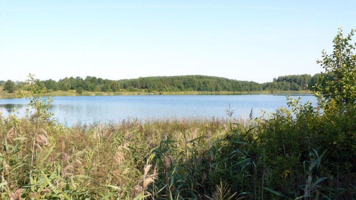 Озеро Табашинское — гидрологический памятник природы