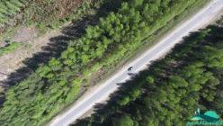 Трасса Йошкар-Ола - Козьмодемьянск вблизи посёлка Алешкино