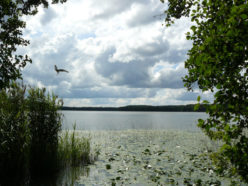 Озеро Большой Марьер и Серый журавль (А.В. Исаев и Г.А. Богданов)