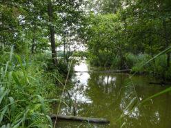 Протока между озерами Большой и Малый Марьер (А.В. Исаев и Г.А. Богданов)