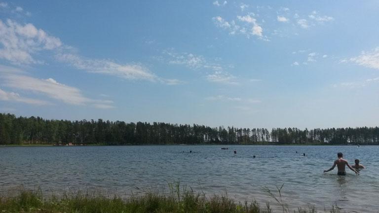 Карась — озеро в сосновом бору