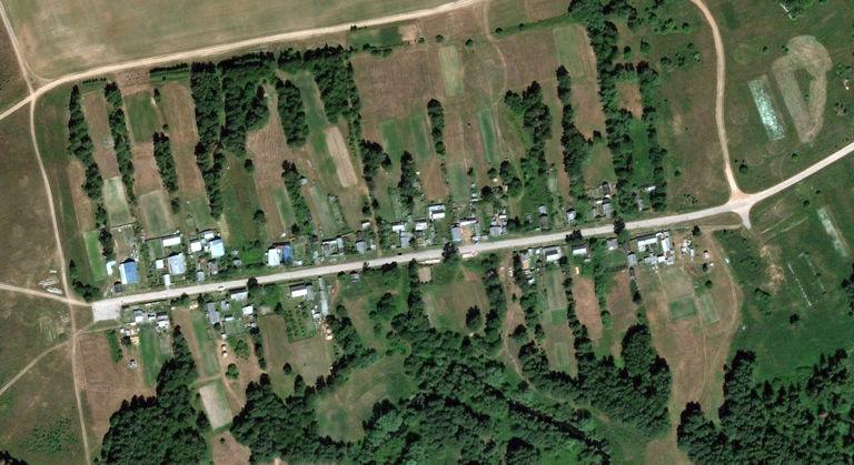 Василенки — деревня в Сернурском районе