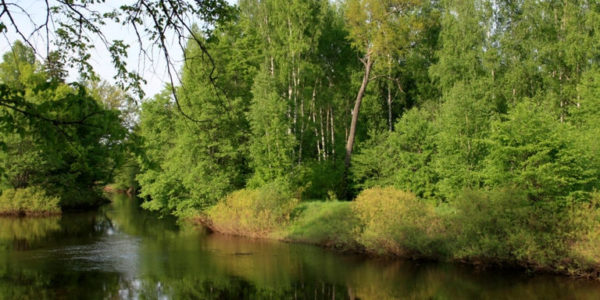 река Рутка