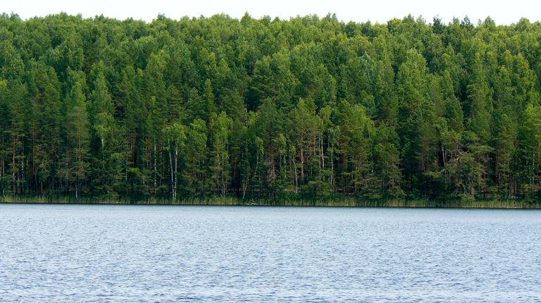 Озеро Нужьяр — гидрологический памятник природы