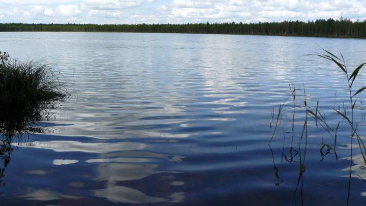 Озеро Шордыер — гидрологический памятник природы